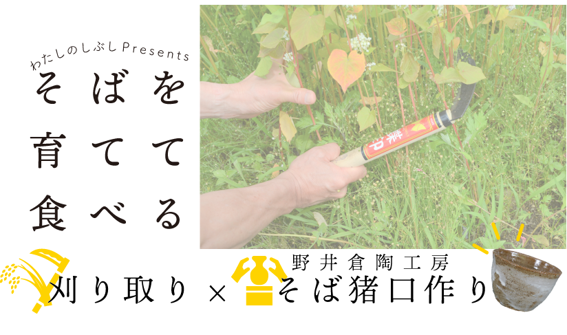 6月1日(土)「そばを育てて食べる」刈り取り&そば猪口作り開催!